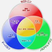 yjimage20150426